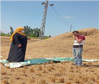 ياسمين فؤاد: إجراءات صارمة للحفاظ على البيئة