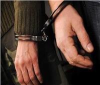 ضبط عناصر إجرامية في حملات أمنية بالإسماعيلية والمنصورة