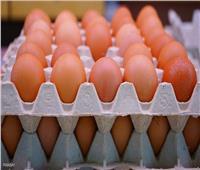 ارتفاع سعر كرتونة البيض في الأسواق لـ53 جنيها الأحد 3 أكتوبر