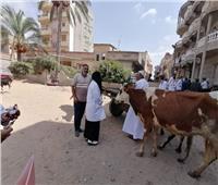 «الزراعة»: قوافل بيطرية مجانية ضمن مبادرة حياة كريمة بدمنهور