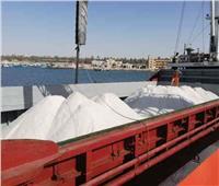 تصدير 3400 طن ملح إلى لبنان عبر ميناء العريش