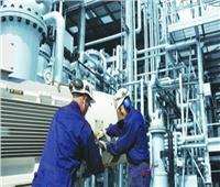 تعظيم القيمة المضافة للموارد الطبيعية بصناعة البتروكيماويات