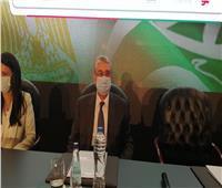 الكهرباء: 3 محطات تحويل وكابلات بحرية وخطوط هوائية لمشروع الربط مع السعودية
