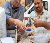 ضبط 300 كليو أسماك مجمدة غير صالحة للاستهلاك الآدمي بالأقصر