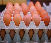 كرتونة الأبيض بـ47 جنيهًا.. ارتفاع أسعار البيض السبت 9 أكتوبر