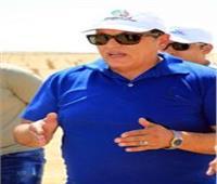 «الريف المصري» تخصص ٤٢٠ فدان لزراعة محصول دوار الشمس بالمغرة
