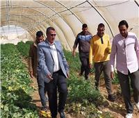 محافظ شمال سيناء: مضاعفة مساحة الأراضي الزراعية لمن يثبت جديته خلال 10 سنوات