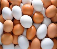 ارتفاع أسعار البيض اليوم الأحد 10 أكتوبر