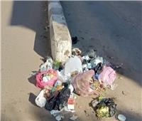 وضع صناديق قمامة بالشوارع.. مطالب أهالي «صان الحجر» بالشرقية