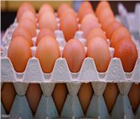 رئيس شعبة بيض المائدة يكشف عن أسباب ارتفاع أسعارها