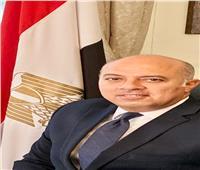 سفيرنا بالمجر: دول «فيشجراد» ترغب في الاستماع لرؤية مصر حول الأوضاع بالمنطقة