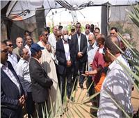 «الزراعيين» تشارك في مبادرة «إتحضر للأخضر» بالوادي الجديد