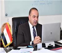 نائب وزيرة التخطيط: الاستجابة المصرية لجائحة كوفيد 19 كانت ملهمة
