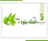 إنفوجراف|  5 فوائد طبيعية لعشبة «الجنكه بيلوبا»