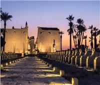 «كرنفال فرعوني» مبهر للافتتاح.. 10 معلومات عن طريق الكباش