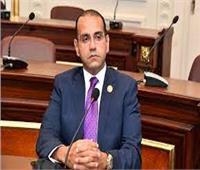 صناعة الشيوخ: مشاركة الرئيسالسيسي في قمة «فيشجراد»تدعم الاستثمار والصناعة