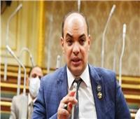 نائب: كلمة الرئيس السيسي كاشفة لرؤية مصر في حقوق الإنسان