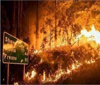 إعلان الطوارئ بكاليفورنيا بسبب حرائق الغابات المدمرة| فيديو