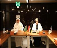 تعاون مصري سعودي في مجال حماية البيئة