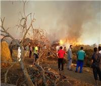 «الحماية المدنية» تسيطر على حريق نشب بموقع «قش الأرز» بالدقهلية | صور