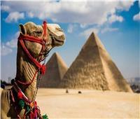 الإعلام الروماني يسلط الضوء على السياحة المصرية ويُبرز جمال شرم الشيخ