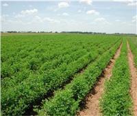 الهيئة الهندسية: الانتهاء من مشروعات المجمعات الزراعية نهاية العام الجاري