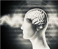 في الستينيات .. العلماء يتحكمون في تفكير الإنسان عن طريق القرود