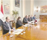 شكرى: جائحة كورونا أتاحت الفرصة لتعزيز التعاون بين الدول الأفريقية