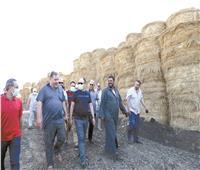 وزيرة البيئة: تعظيم الاستفادة الاقتصادية من المخلفات الزراعية