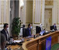 ننشر قرارات اجتماع اللجنة العليا لإدارة أزمة فيروس كورونا بحضور مدبولي