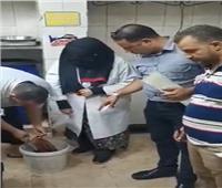 ضبط وإعدام كبدة «فاسدة» بالجيزة   فيديو