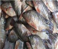 قبل بيعها بالأسواق.. إحباط توزيع 1.5 طن أسماك فاسدة بالقليوبية