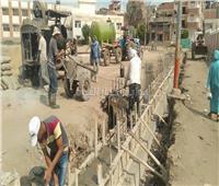 «حياة كريمة» تعيد الحياة لأهالي القرى بالبحيرة..وتنفيذ ٩٥ مشروعا