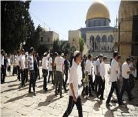 البرلمان العربي يرفض قرار السماح لليهود المتطرفين بالصلاة في الأقصى