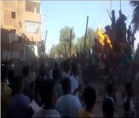 بالجمال والخيول.. مسيرات ضخمة احتفالًا بالمولد النبوي في شوارع قنا  فيديو