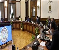 مدبولي: الرئيس السيسي يتابع دوريًا المشروع القومي لتصنيع وتجميع البلازما