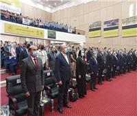 جامع: مصر الأولى عالمياً فى إنتاج التمور بنسبة 18% وعربياً 24%