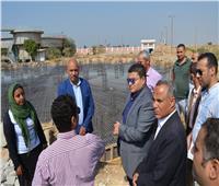 نائب محافظ بني سويف يتابع تنفيذ مشروعات «حياة كريمة» بمركز ناصر