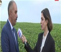 إبراهيم مشالي يكشف تفاصيل المزرعة المصرية الأوغندية | فيديو