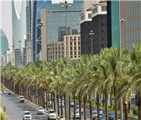 السعودية تفرض غرامة ضد من يشعل النار بالحدائق