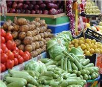 استقرار أسعار الخضروات بسوق العبور الأربعاء20 أكتوبر