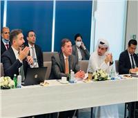 رئيس هيئة الاستثمار يبحث مع الشركات الإماراتية تنفيذ استثمارات جديدة في مصر