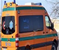 مصرع 19 شخصًا في حادث على الطريق الدائري الأوسطي