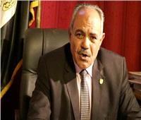 الزراعة : استصلاح 200 ألف فدان بمشروع مستقبل مصر