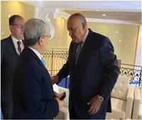 شكري يلتقي نظراءه وزراء خارجية تونس واليونان والجزائر وتشاد