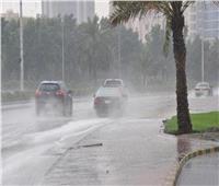 أمطار ورياح.. «الأرصاد» تقدم نصائح لتجنب التقلبات الجوية