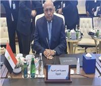 شكري: مصر ستظل داعمة للشعب الليبي ومساعي إنهاء أزمته