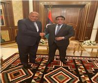 شكري: الانتخابات خطوة أساسية لعبور ليبيا نحو المستقبل