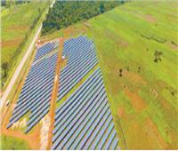 شمس «العربية للتصنيع» تولد كهرباء لأوغندا