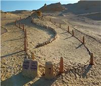 الاتحاد الدولي لحماية الطبيعة:وضع محميات وادي الريان وبحيرة قارون على القائمة الخضراء